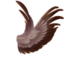 Wings by Shalnor