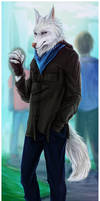 .:Commission: Shane:. by Amand4