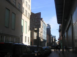 Street Viewing by Ferriman