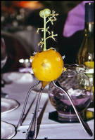 Orange Crush: Evolution by Ferriman