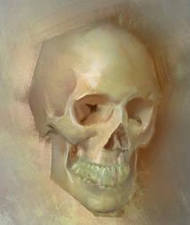 Skull from life by Carl-Ellistrator