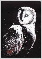 Tyto alba by GabrielleGrotte