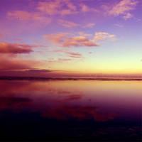 Reflections by x-a-e