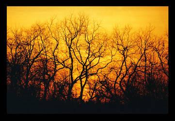Sunset 4b by Jeremyti