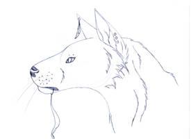 Irgendein Wolf by Celeun