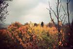 Somewhere. by winona-adamon