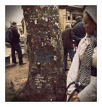 Blahblah Tree. by winona-adamon