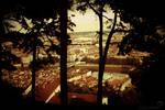Observe la ville. by winona-adamon