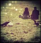 The girl who heard birds. by winona-adamon