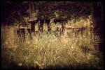 [A momentary memory lapse] by winona-adamon