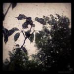 Le temps chatouille... by winona-adamon