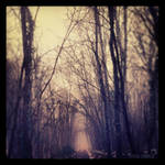 Mystic Walk by winona-adamon