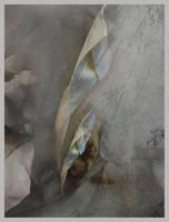 Paper Covers Rock by arminmersmann2