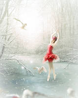 Wintry dance lesson by aninur