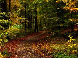 Forest Gimp by sahk99