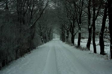 Winter trail by sahk99