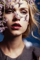 Flower Fever by silkephoto