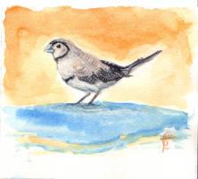 Little Finch by Feuillyien