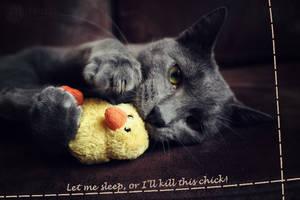 Let me sleep... by Mirouchi