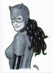 Catwoman (90s costume) by Promethean-Arts