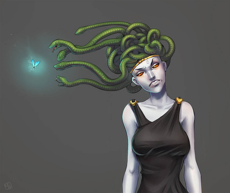 Medusa's problem by Neizu