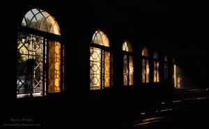 windows by farzanehlphl