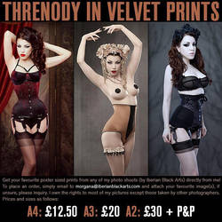 Threnody In Velvet Prints by ladymorgana