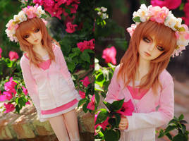 Spring Again by kuroi-carousel