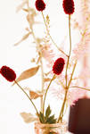 Summer flowers II by firedeluxe