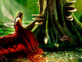 The Wisdom of Trees by Onyria