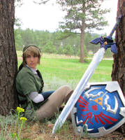 Master Sword and Hylian Shield Closeup by Wilkowen