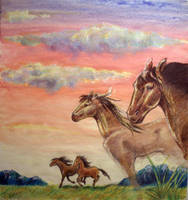 Horses by CyanilurusJubatus