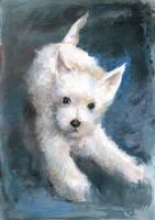Eager Terrier Pup by CyanilurusJubatus