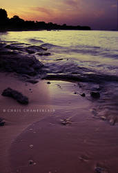 Calm by FasterThanChris