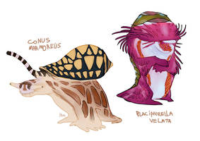 Cone snail and veiled chiton by Obman-Veschestv