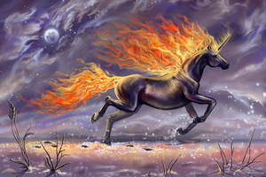 Fire Horse by Leysi