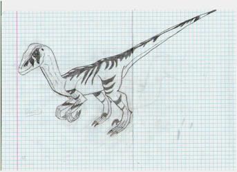 male raptor by DinoR9