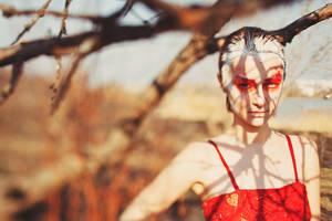 Forest by Lileinaya