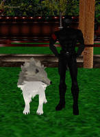 Snake Eyes With Timber Wolf by dragonzero1980