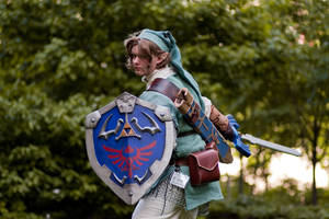 Link - Battle ready by Markiemark425