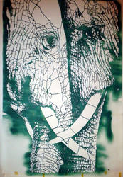 Elephants - One color by AmineShow