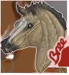 Full Foal by Thepaintedpony