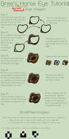 Horse Eye Tutorial -New- by Thepaintedpony