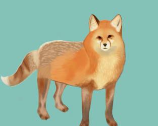 Fox by FlurryOfWhimsy