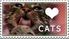 Love cats stamp by BlastOButter