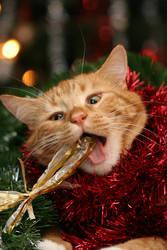 Killing Christmas by BlastOButter