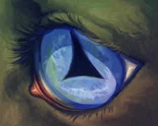 the eye of the beast by artlatkes
