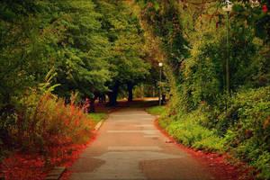 My street... by MamaMika