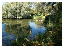 The pond by Jeff59