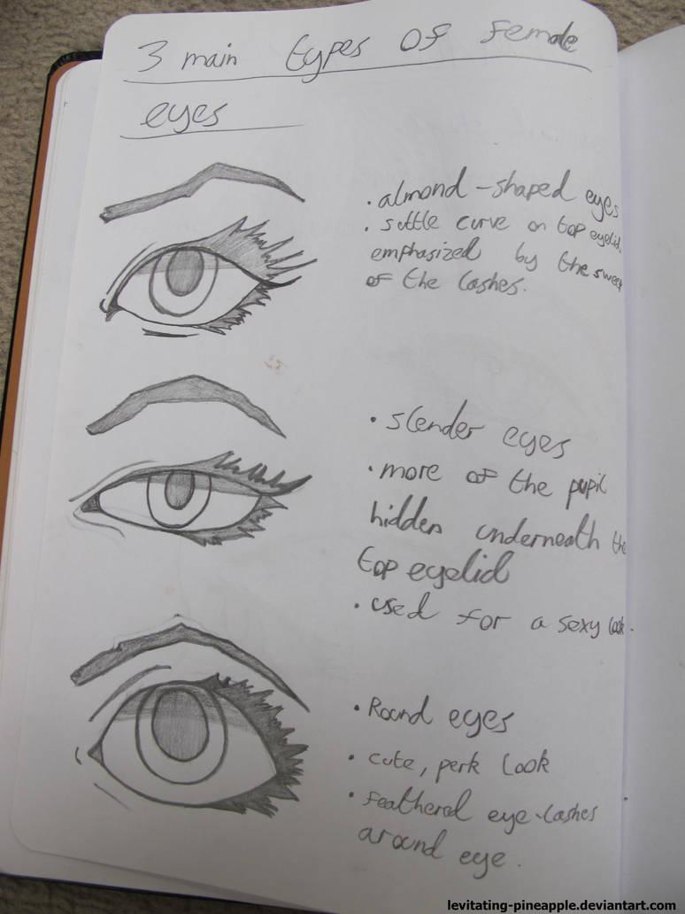 Human Anatomy Practice Female Eyes 2 By Levitating Pineapple On